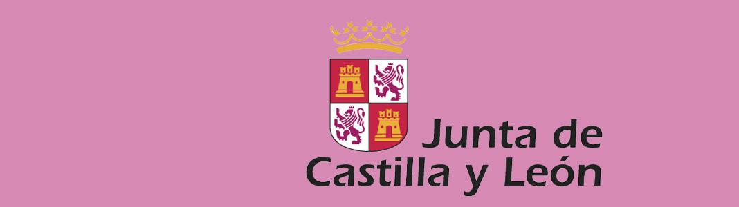 Personal de Servicios JCyL | Academia Minerva